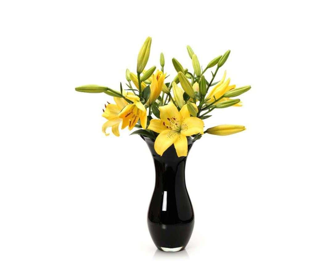 Pavia Vase